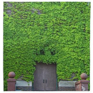 Mary Manse Doors- vertical Napkin