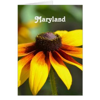 Maryland Black Eyed Susan Stationery Note Card