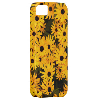 Maryland Black Eyed Susan iPhone 5 CaseMate iPhone 5 Cover