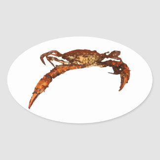 Maryland Blue Crab Oval Sticker