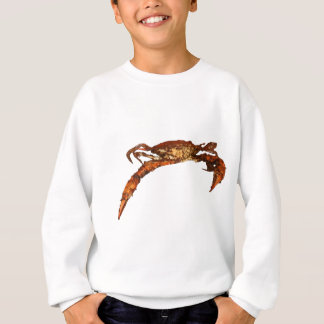 Maryland Blue Crab Sweatshirt