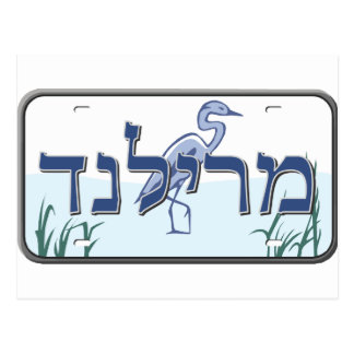 Maryland License Plate in Hebrew Postcard