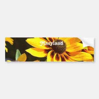 Maryland State Flower Bumper Sticker