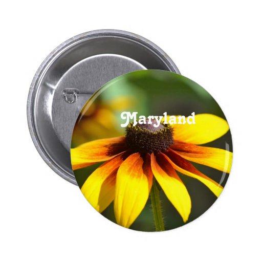 Maryland Susan observada negro Pins