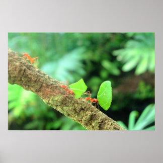 Marzo de las hormigas póster