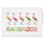 Marzo de los flamencos tropicales BARBADOS Tarjeta De Felicitación