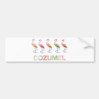 Marzo de los flamencos tropicales COZUMEL Etiqueta De Parachoque