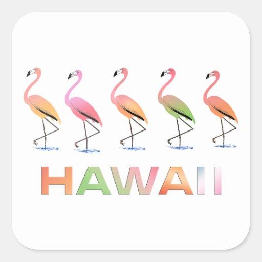 Marzo de los flamencos tropicales HAWAII Etiquetas