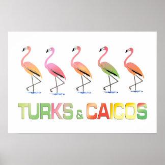 Marzo de los TURCOS y del CAICOS tropicales de los Impresiones