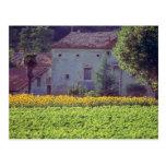 mas amarillo de Provencal cerca de Carpentras en e Tarjetas Postales