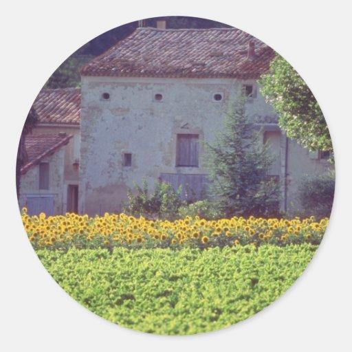 mas amarillo de Provencal cerca de Carpentras en Pegatina Redonda