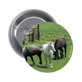 ¡Más caballos Pin
