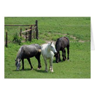 ¡Más caballos Felicitación
