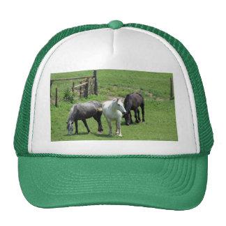 ¡Más caballos Gorra