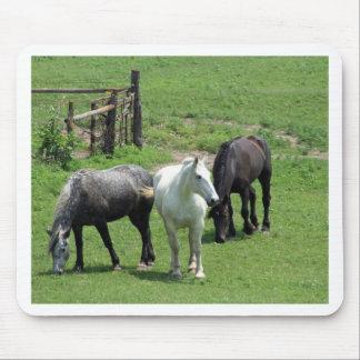 ¡Más caballos Alfombrilla De Ratón