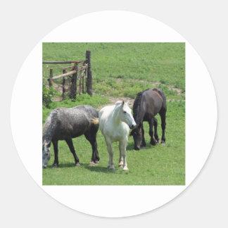 ¡Más caballos Etiquetas Redondas