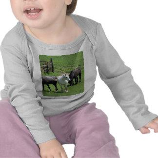 ¡Más caballos Camisetas