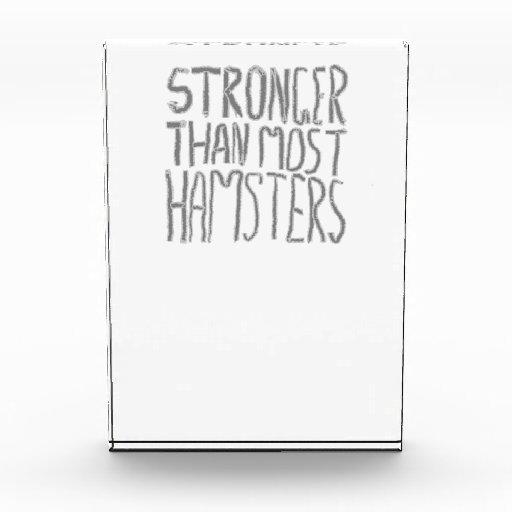 Más fuertes que la mayoría de los hámsteres