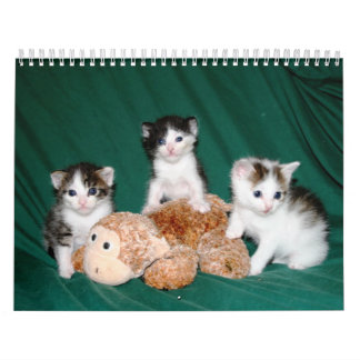 ¡Más gatitos! Calendarios