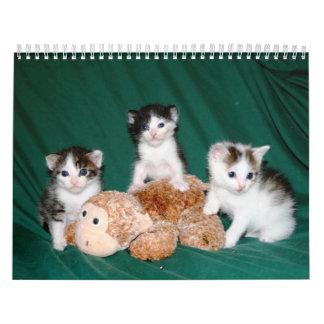 ¡Más gatitos! Calendario De Pared