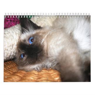 Más gatitos calendarios de pared