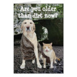 Más viejo que cumpleaños de la suciedad tarjeta de felicitación