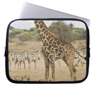 Masai Giraffe and Common Zebra at Amboseli NP, Laptop Computer Sleeve