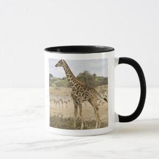 Masai Giraffe and Common Zebra at Amboseli NP, Mug
