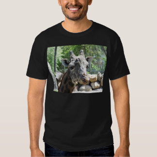 Masai Giraffe Close Up Portait T Shirt