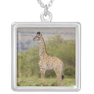 Masai Giraffe (Giraffa camelopardalis 2 Square Pendant Necklace