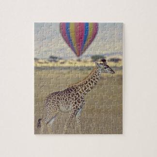 Masai Giraffe (Giraffa camelopardalis Jigsaw Puzzle