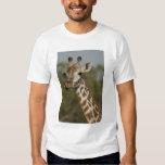 Masai Giraffe, Giraffa camelopardalis T-Shirt