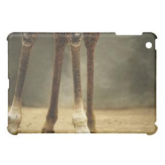 Masai giraffe, low angle view of legs, Giraffa Case For The iPad Mini