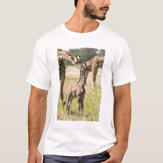 Masai giraffes, Giraffa camelopardalis 2 T-Shirt