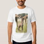 Masai giraffes, Giraffa camelopardalis 2 Tee Shirt