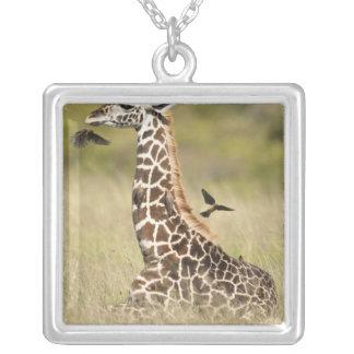 Masai giraffes, Giraffa camelopardalis Custom Necklace