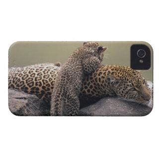 Masai Mara National Reserve 2 iPhone 4 Case-Mate Case