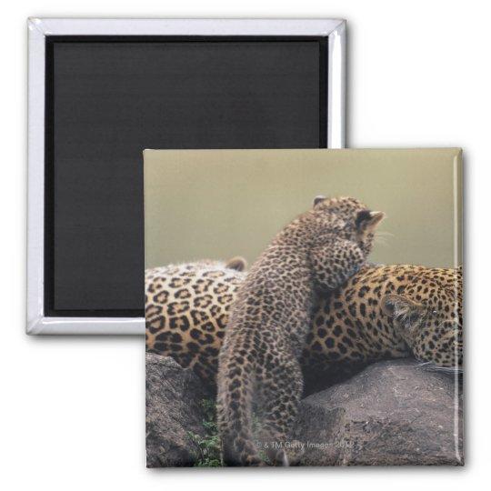 Masai Mara National Reserve 2 Magnet