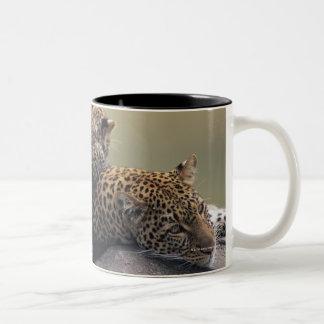 Masai Mara National Reserve 2 Two-Tone Coffee Mug
