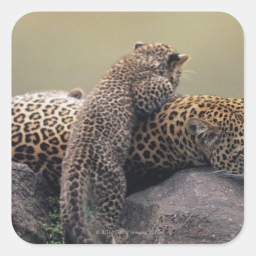 Masai Mara National Reserve 2 Stickers