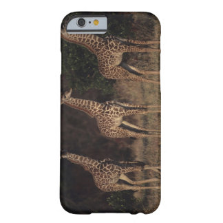 Masai Mara National Reserve 3 Barely There iPhone 6 Case
