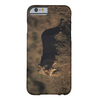 Masai Mara National Reserve 4 Barely There iPhone 6 Case