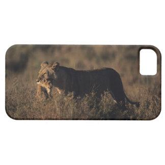 Masai Mara National Reserve 4 iPhone SE/5/5s Case