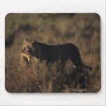 Masai Mara National Reserve 4 Mouse Pad