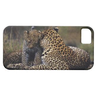 Masai Mara National Reserve 5 iPhone 5 Cover