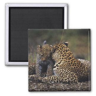 Masai Mara National Reserve 5 Fridge Magnet