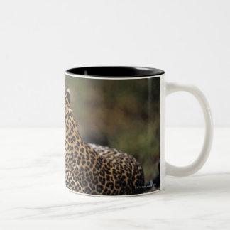 Masai Mara National Reserve 5 Two-Tone Coffee Mug