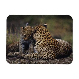Masai Mara National Reserve 5 Magnets