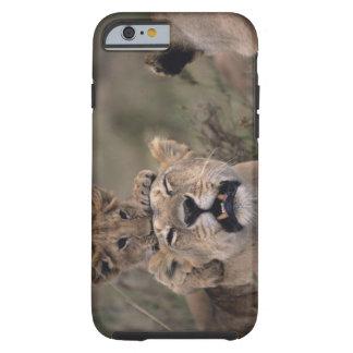 Masai Mara National Reserve 6 Tough iPhone 6 Case