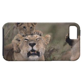 Masai Mara National Reserve 6 iPhone SE/5/5s Case
